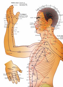 A diagram of acupuncture channels