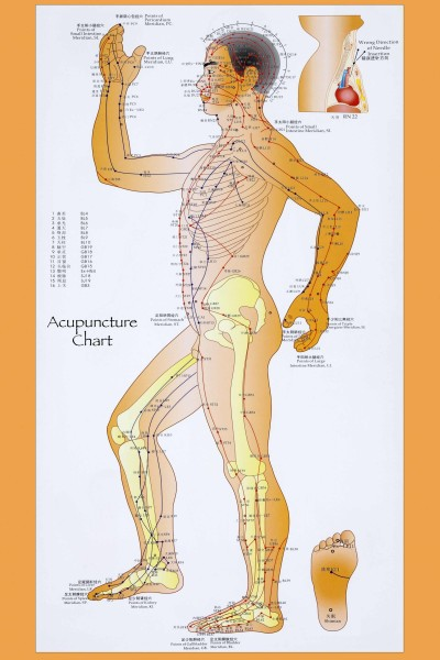 Acupuncture Helps Pelvic Pain | Alban Acupuncture